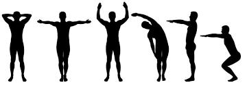 tipi di ginnastica